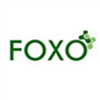 FOXO <b>TECHNOLOGY</b> CO., LTD